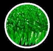 DBL GREEN LAND